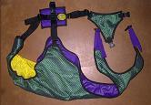 Purple Body/Kelly Green Male Dog Diaper and Female Dog Diaper
